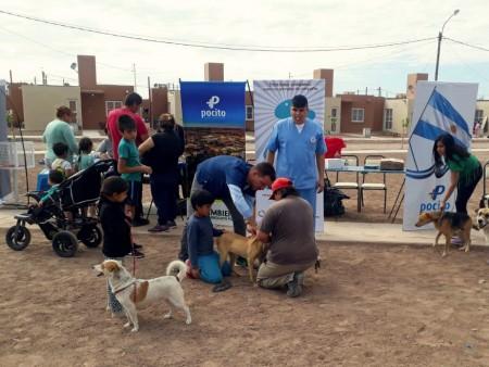 Ambiente vacunó animales de compañía en el barrio Cruce de los Andes