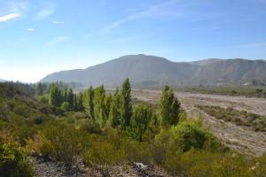 Ambiente invita a participar de la II Jornada de Concientización Ambiental