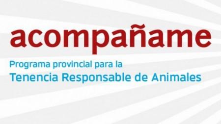 La esterilización de animales de compañía llegará a cuatro comunas en noviembre