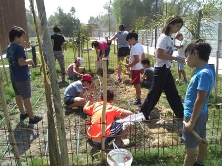La Huerta de IxD combina ciencia, conocimiento, alimentación saludable y cuidado ecológico
