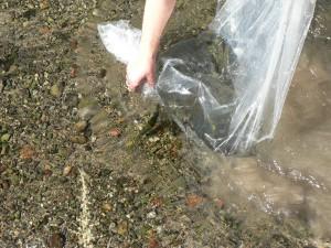 Ambiente amplía la prohibición de pescar en el Dique Punta Negra