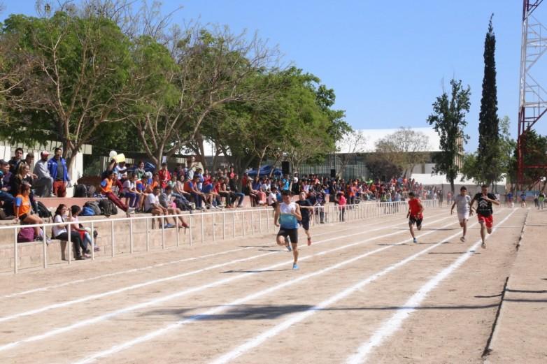 Carrera de atletismo en el Complejo El Palomar.