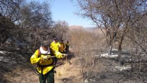 Declaran extinto el fuego en Valle Fértil