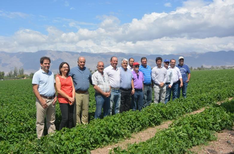 San Juan, anfitrión de lujo para el Congreso Mundial del Tomate 2020
