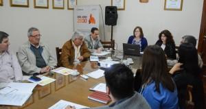CoPESJ: avanza el Plan Estratégico San Juan 2030
