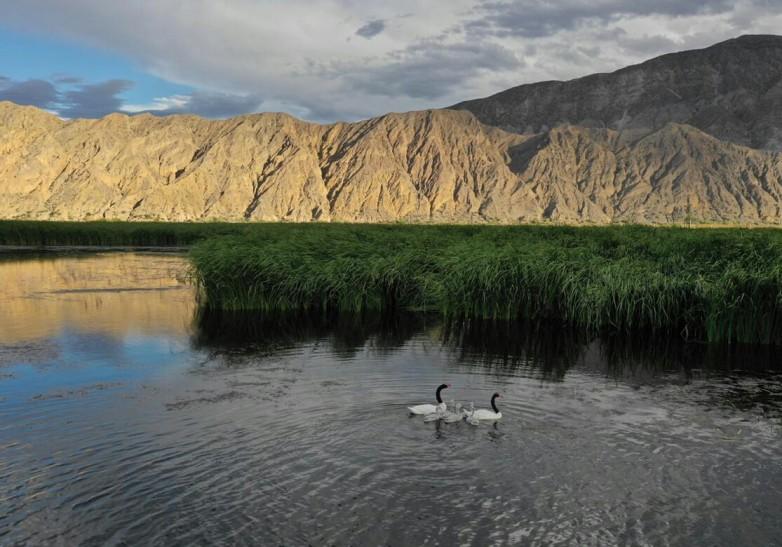 Éstas son las áreas protegidas que tenés que conocer en verano