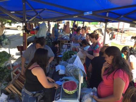 El Camión de Frutas y Verduras se traslada hasta Pocito