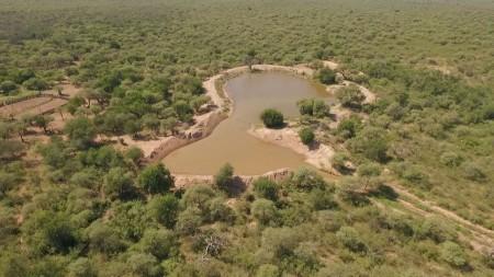 Comenzó el periodo para presentación de proyectos de conservación de bosques