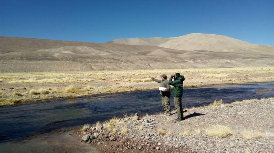 Ambiente realizó un nuevo monitoreo de variables biológicas en San Guillermo
